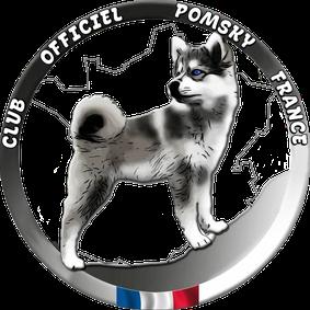 CLUB OFFICIEL POMSKY FRANCE