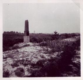 Verwahrlostes Massengrab. Foto: unbekannt, April 1952. Archiv KZ-Gedenkstätte Neuengamme