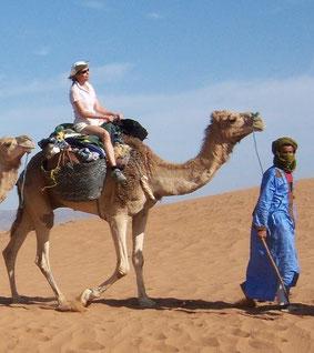 Randonnée avec dromadaire, méharée au désert