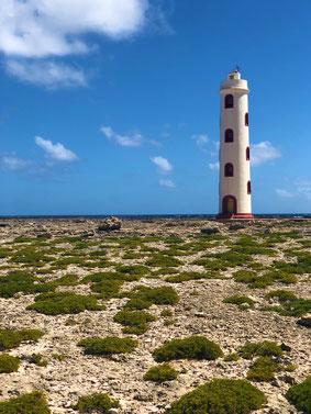 Bonaire (01.01.2019)