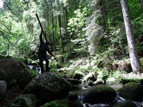 Black Forest (Triberg Waterfalls)