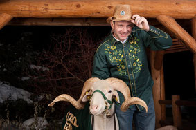Cam the Ram der Colorado State University