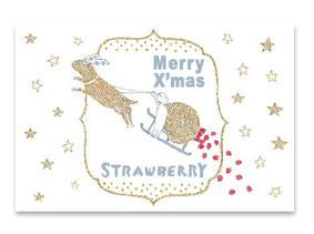 美容室strawberryさま クリスマスDM'14