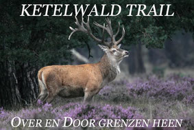 Inschrijven Ketelwald Trail 2014