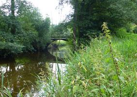"""Röder-Brücke zur Tobiasmühle – Rechts die """"Bleeche"""";   Foto: Schönfuß"""