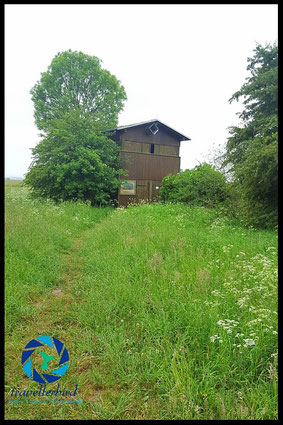 Beobachtungstrum, Aussichtsturm, Hide, Shelter