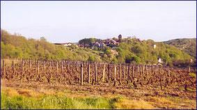 Saint Romain le Haut, vu des vignes