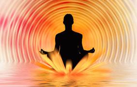Raja Yoga Yogawege Yin Yoga Kurs Michaela Hold München Familienaufstellung Holistic Pulsing Ausbildung Kartenlegen