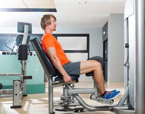 leg exercises adductor