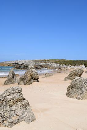 Playa de Toro