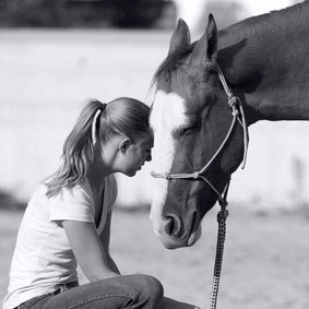 Christina Hummel Pferdetraining Tirol Schwaz Unterland mobiler Unterricht Reitlehrer Pferdetrainer fair ruhig individuell