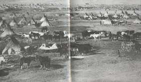 In diesem weitläufigen Sioux Lager wimmelte es von Pferden, von denen einige nur zur Jagd oder im Krieg verwendet wurden, während andere den Besitz ihrer Eigentümer auf einfachen Schleppgestellen oder später auf Planwagen transportierten