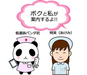 看護師パンダ