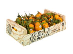 die Süsse Susi Holzkiste Clementinen mit Blatt