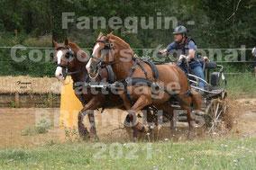 SAURY Jean Marie - paire chevaux