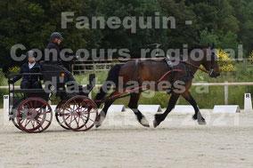 CARME Nicolas - solo cheval