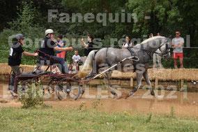 BENZ Nicolas - solo cheval