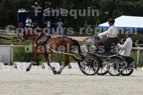 MAZA Benoit - solo cheval