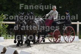 BEZIAT Alain - Team chevaux MERENS