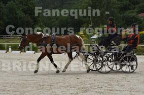 DERVIEUX Christine - solo cheval