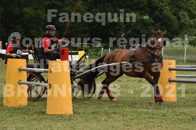 BEURET Didier - solo cheval