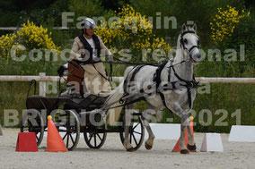 BRASSE Catherine - solo cheval