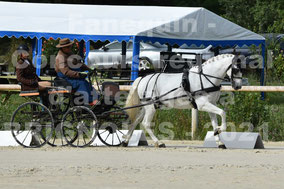 AVRIL Etienne - solo cheval PRE