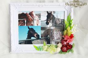 馬 ひだまり牧場 フォトフレーム お祝い 花 ドライフラワー プリザーブドフラワー