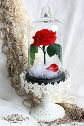 美女と野獣 薔薇 ガラスドーム プロポーズ プリザーブドフラワー