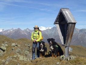 Wandern mit den Hunden in der Lasörlinggruppe (Osttirol)