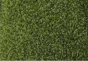 pistachio/ピスタチオ ゴーギャンのタヒチのグリーン