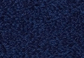 navy blue/ネイビーブルー ゴッホの「アイリス」