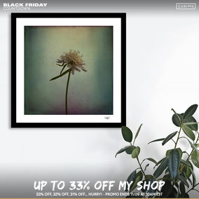 Black Friday in my Curioos shop!!!