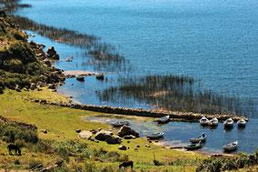 Isla del Sol - Titicacasee