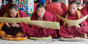 Reportagen von Thomas Zwahlen aus dem Himalaya
