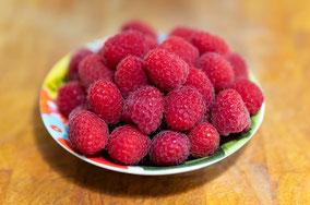 Obst für Kinder, Himbeere