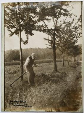 Kohren-Sahlis Bauer beim Mähen