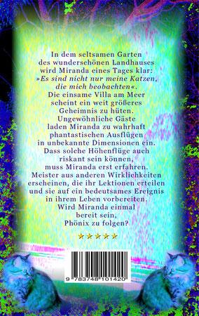 Mara Stein - Offenbarungen im Zeitreisehaus - Buchcover Rückseite