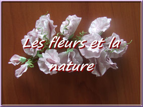 photo modelage pâte à sucre, pâte d'amande, fimo, fleur nature
