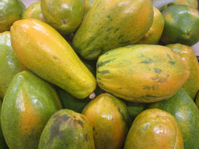 papaya, papayón, papayo, mamón, paymelón paa, lechosa, melón de árbol, fruta bomba
