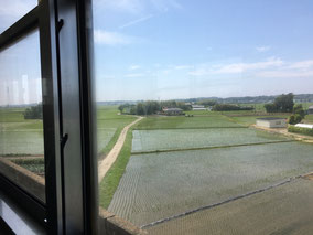 レトロな電車で田園風景を眺める旅