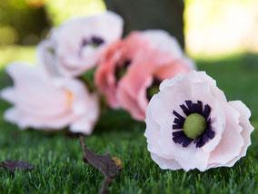flor-amapola-papel