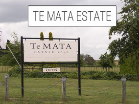Te Mata Estate