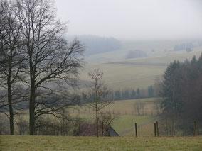 Blick von Beerbach auf die Tauchersreuther Höhe