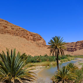 Im Canyon des Oued Ziz