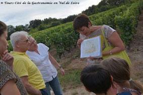 balade-dans-les-vignes-en-famille-enfants-Vouvray-Touraine-Vallée-Loire-Rendez-Vous-dans-les-Vignes-Myriam-Fouasse-Robert