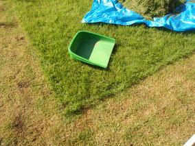お庭の芝刈り