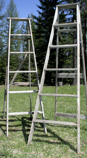 Pair of Wooden ladders
