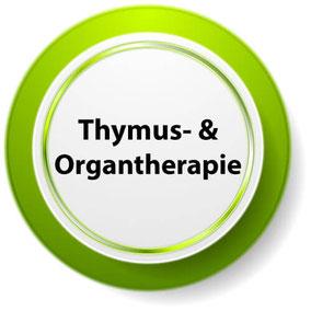 Thymustherapie und Organtherapie