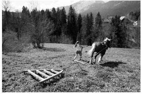 Gite-rural-Agritourisme-Agritourism